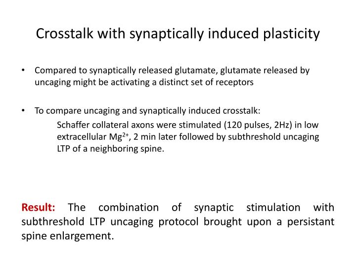 Crosstalk with synaptically induced plasticity