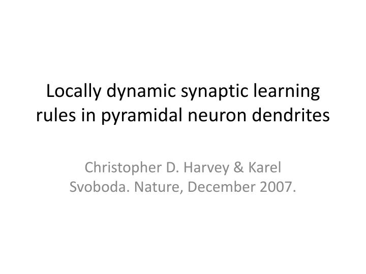 Locally dynamic synaptic learning rules in pyramidal neuron dendrites