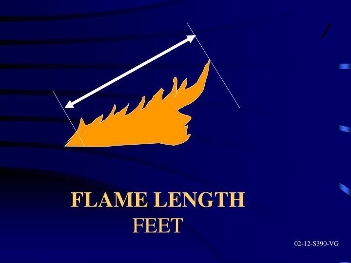 FLAME LENGTH
