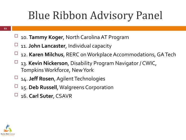 Blue Ribbon Advisory Panel