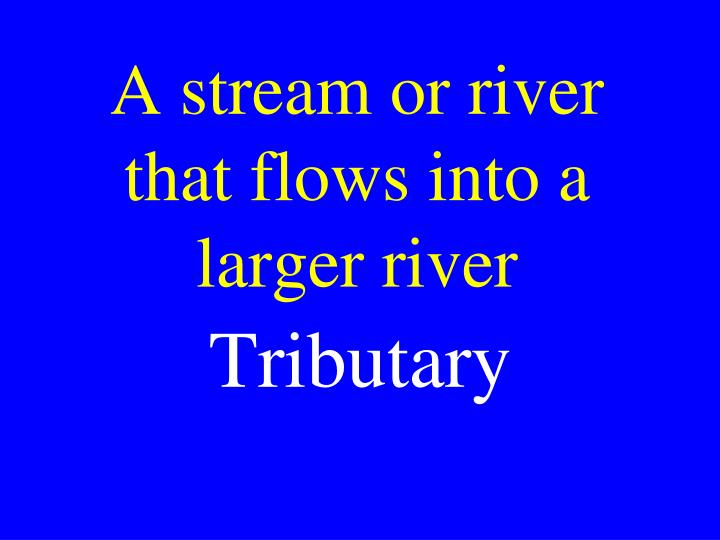 A stream or river that flows into a  larger river