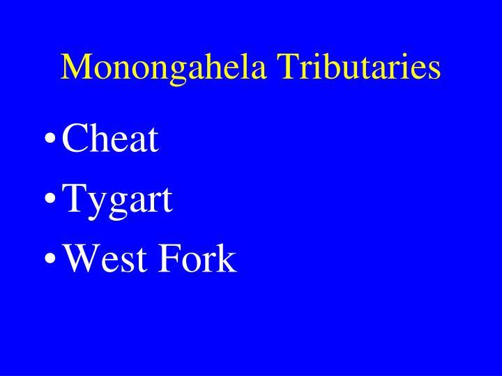 Monongahela Tributaries