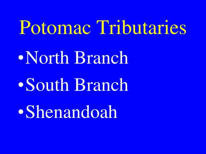 Potomac Tributaries