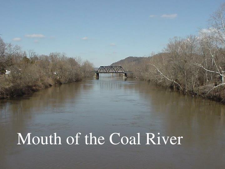 Mouth of the Coal River