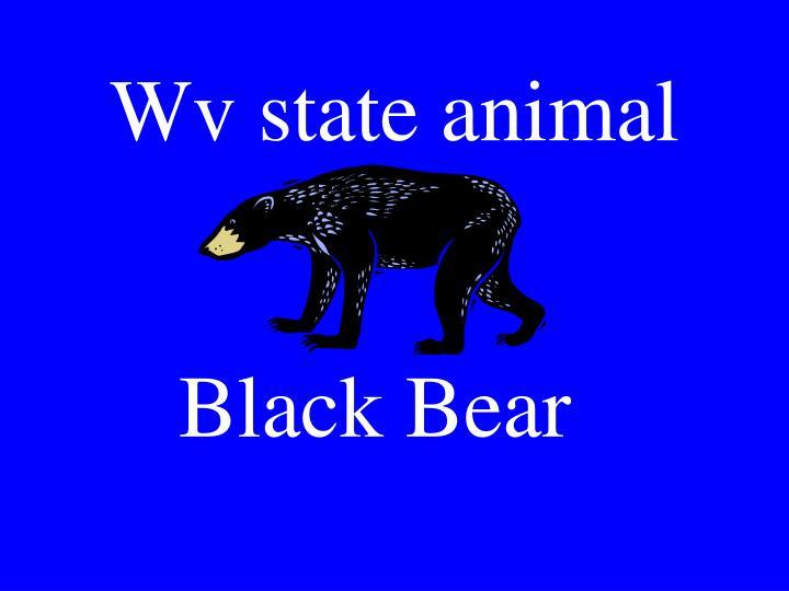 Wv state animal