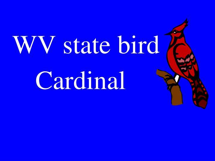 WV state bird
