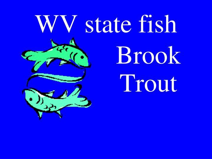 WV state fish