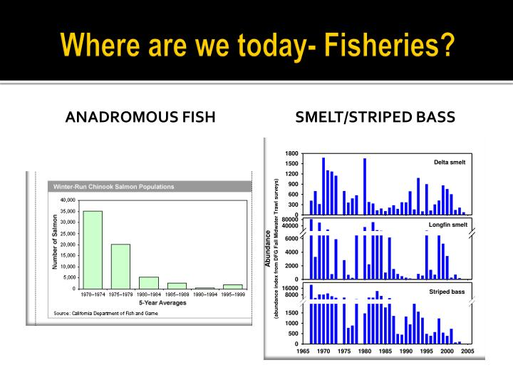 Where are we today- Fisheries?