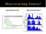 where are we today fisheries