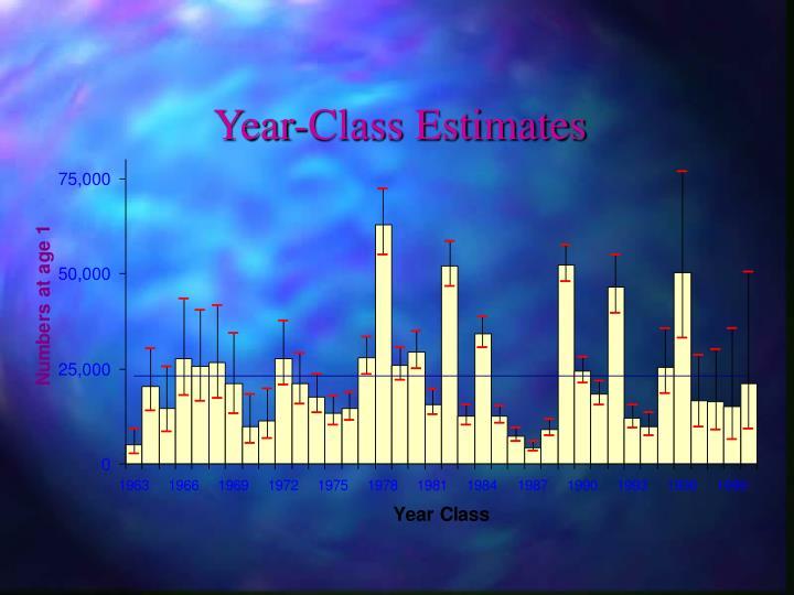 Year-Class Estimates