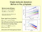single molecule dynamics motion in the cytoplasm1