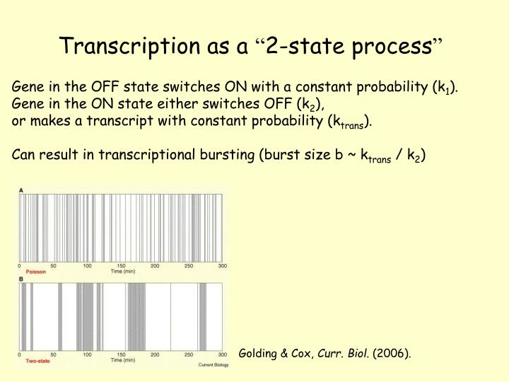 Transcription as a