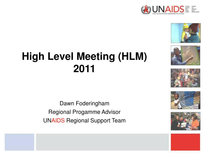 High Level Meeting (HLM)