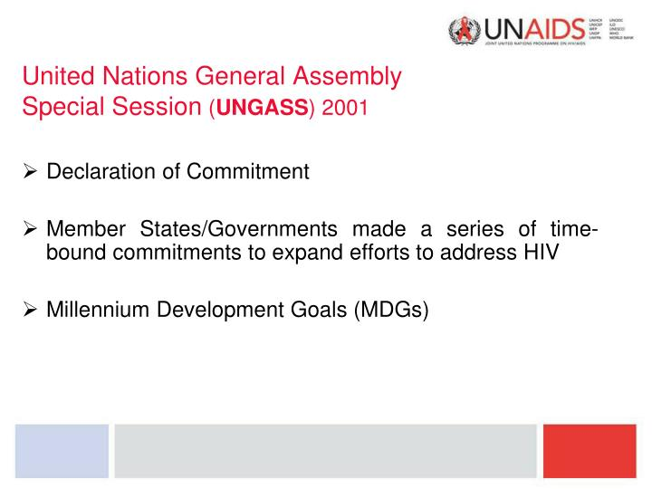 United nations general assembly special session ungass 2001