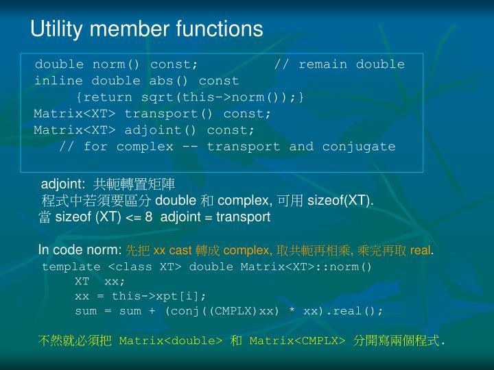 Utility member functions