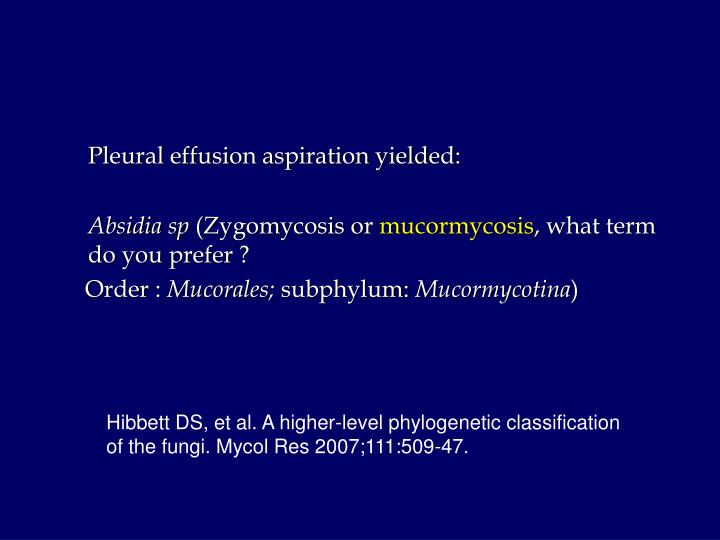 Pleural effusion aspiration yielded: