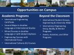 opportunities on campus