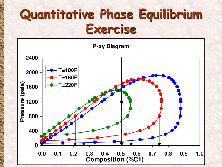 Quantitative Phase Equilibrium Exercise