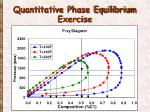 quantitative phase equilibrium exercise1
