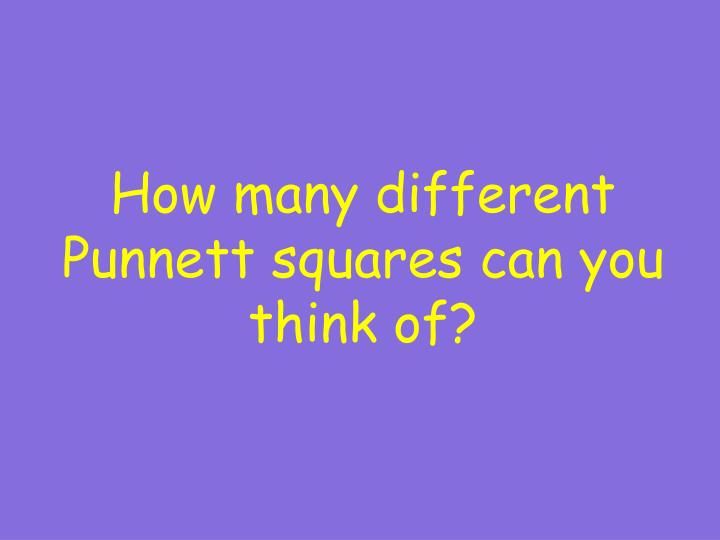 How many different Punnett squares can you think of?