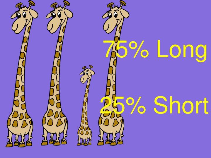75% Long