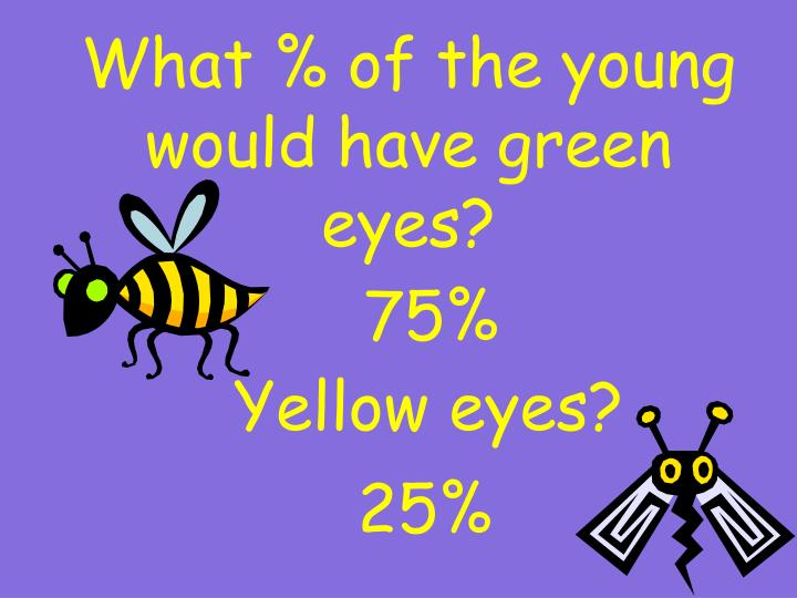 What % of the young would have green eyes?