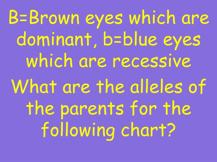B=Brown eyes which are dominant, b=blue eyes which are recessive