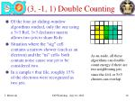 3 1 1 double counting