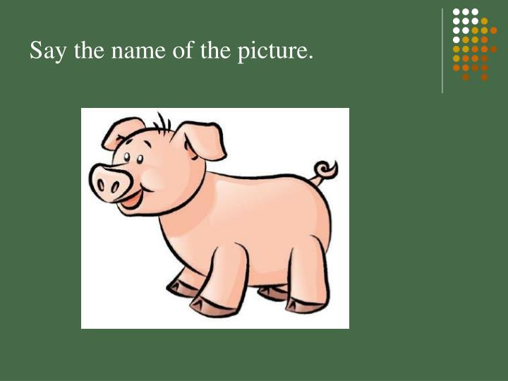 Say the name of the picture.