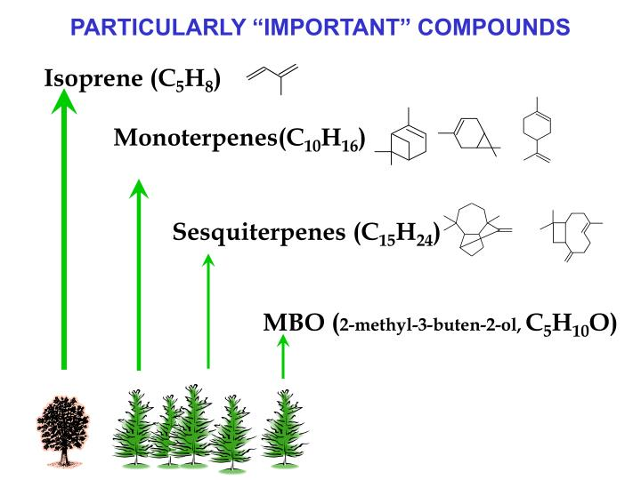 "PARTICULARLY ""IMPORTANT"" COMPOUNDS"