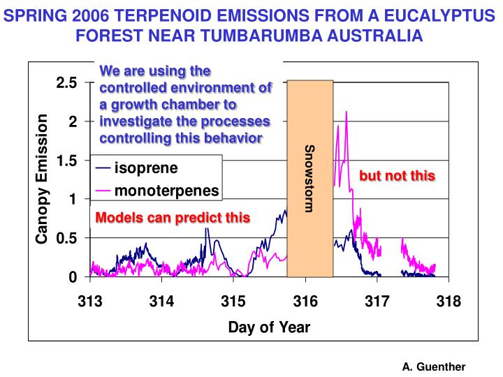 SPRING 2006 TERPENOID EMISSIONS FROM A EUCALYPTUS FOREST NEAR TUMBARUMBA AUSTRALIA