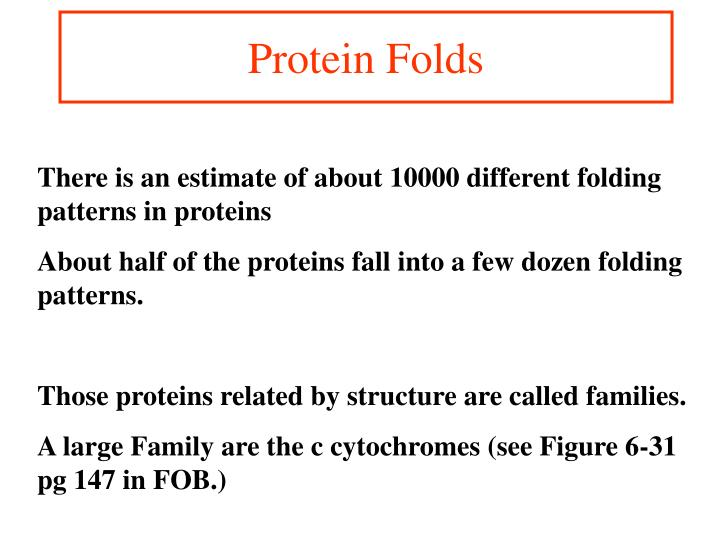 Protein Folds