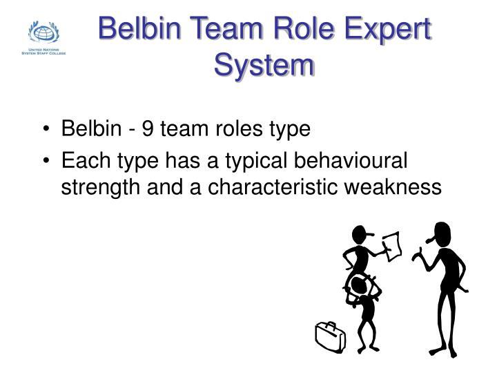 Belbin Team Role Expert System
