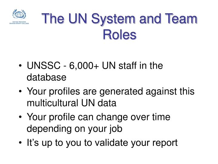 The UN System and Team Roles