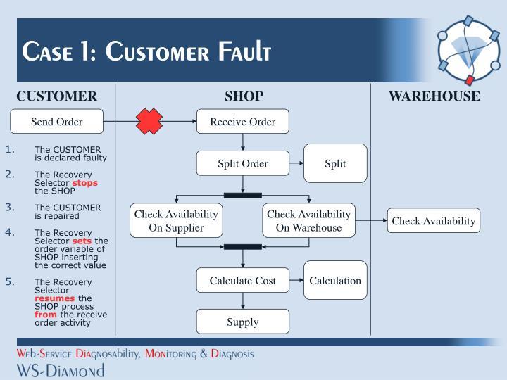 Case 1: Customer Fault