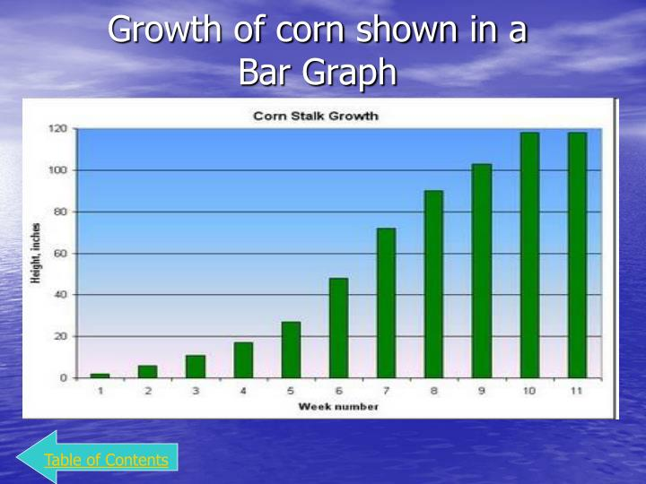 Growth of corn shown in a