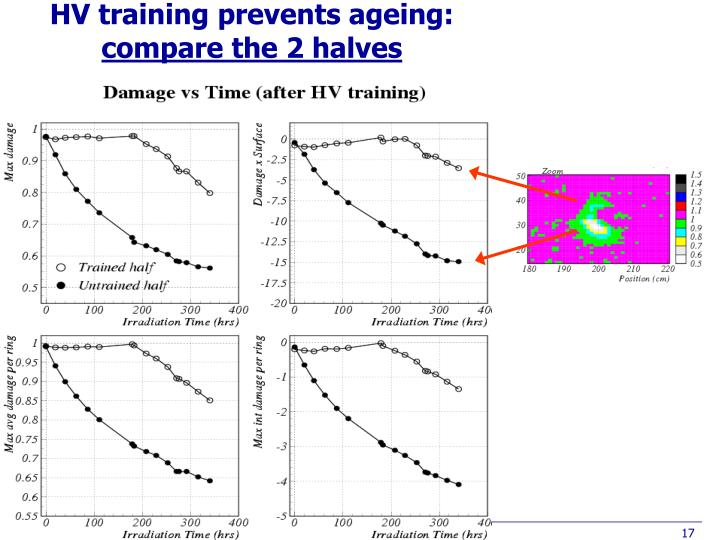 HV training prevents ageing: