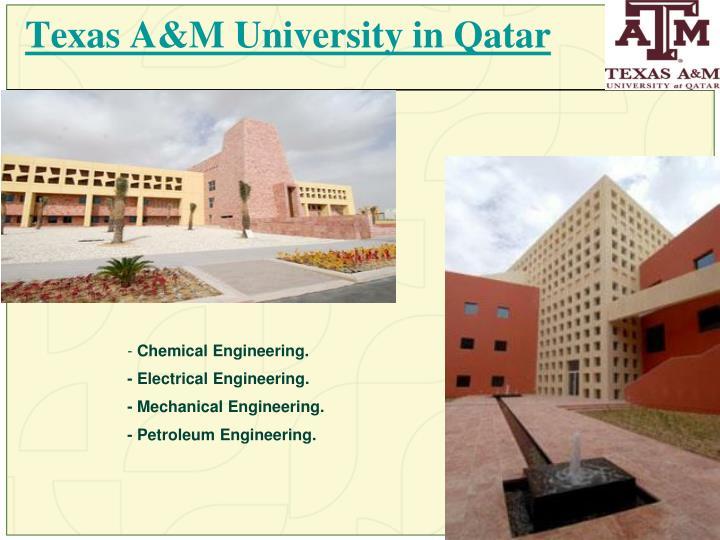 Texas A&M University in Qatar