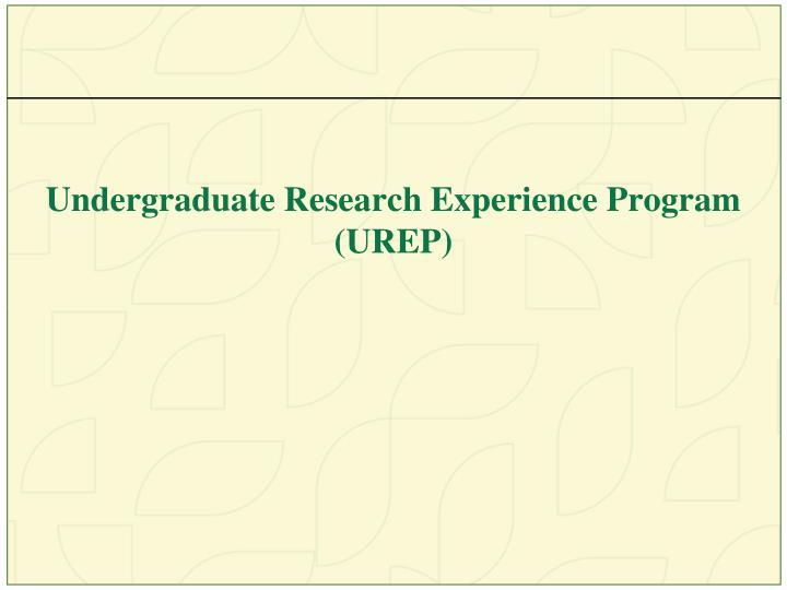 Undergraduate Research Experience Program