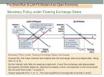 the short run is lm fx model of an open economy4