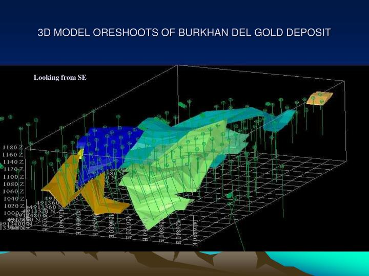 3D MODEL ORESHOOTS OF BURKHAN DEL GOLD DEPOSIT