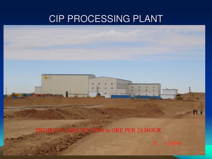 CIP PROCESSING PLANT