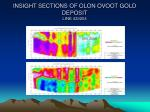 insight sections of olon ovoot gold deposit line 433204