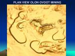 plan view olon ovoot mining