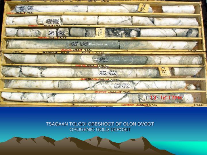 TSAGAAN TOLGOI ORESHOOT OF OLON OVOOT