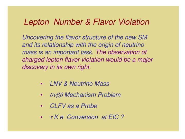Lepton  Number & Flavor Violation