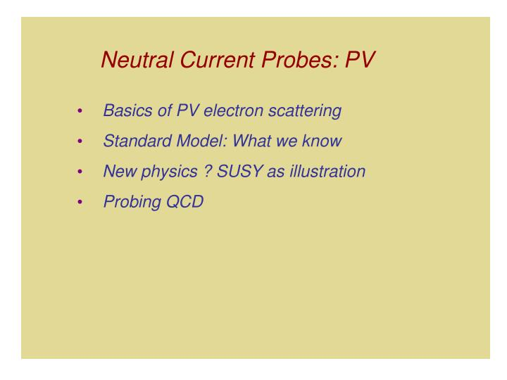 Neutral Current Probes: PV