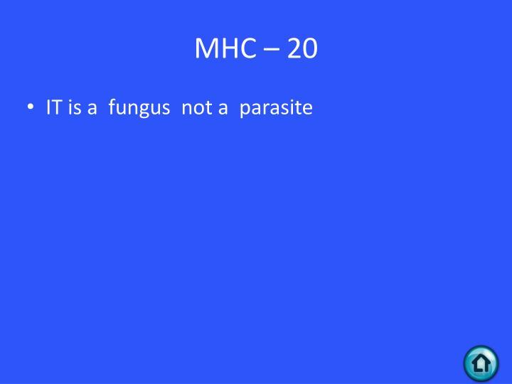 MHC – 20