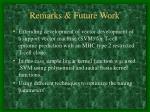remarks future work