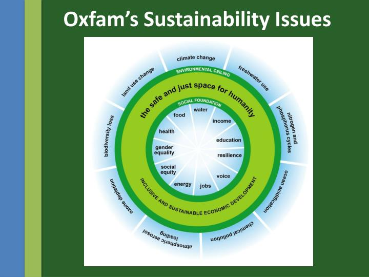 Oxfam's Sustainability Issues